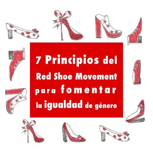 7 Principios del RSM