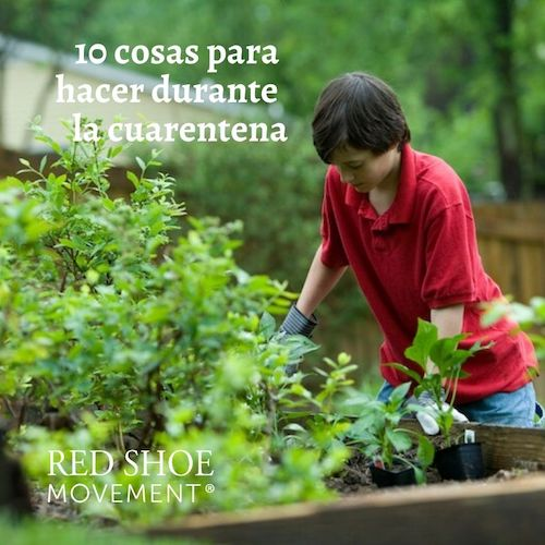 Considera plantar una huerta. Photo Credit- CDC. Unsplash